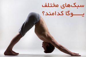 انواع تمرینات یوگا